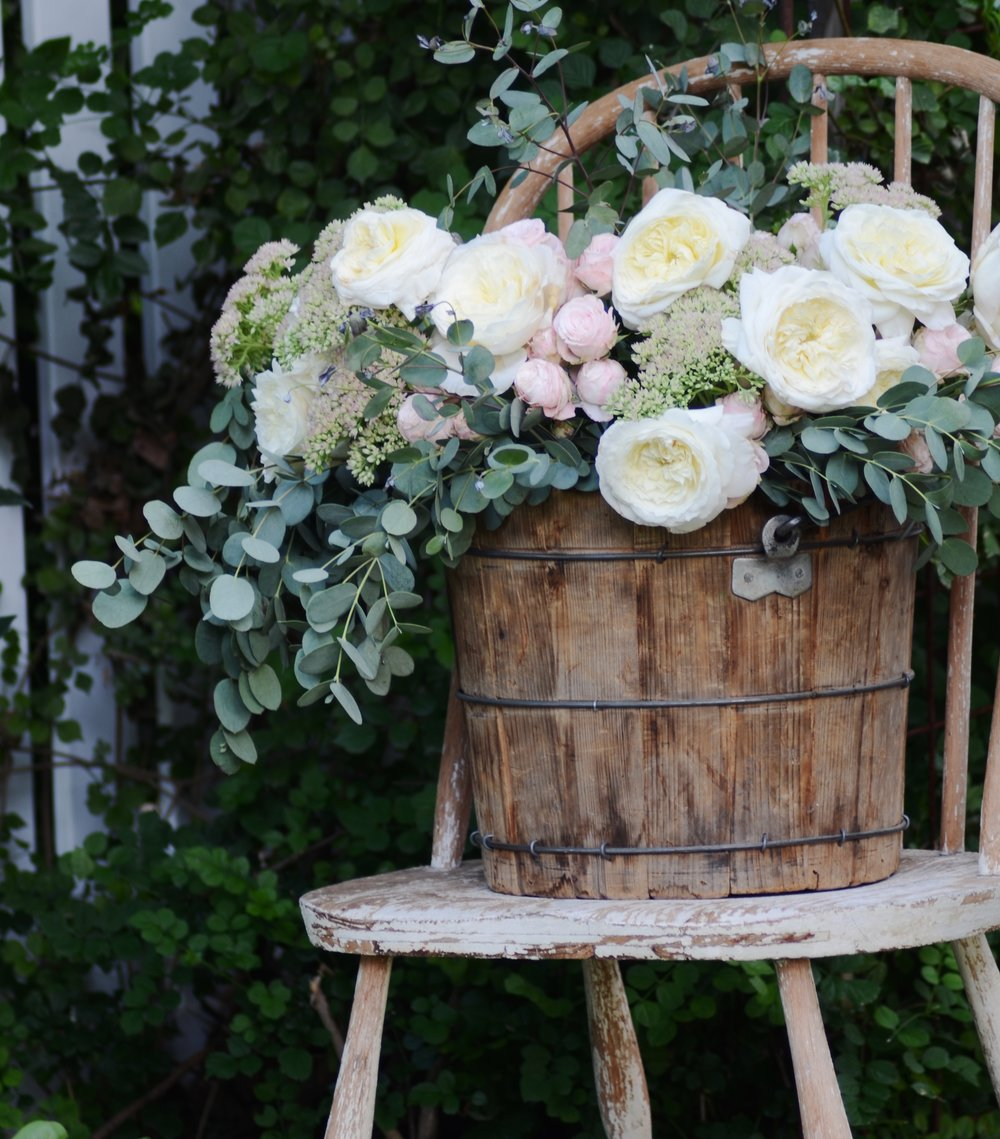 Roses-in-an-old-bucket.jpg