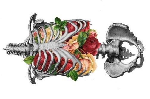 Anatomy of Breath.jpg
