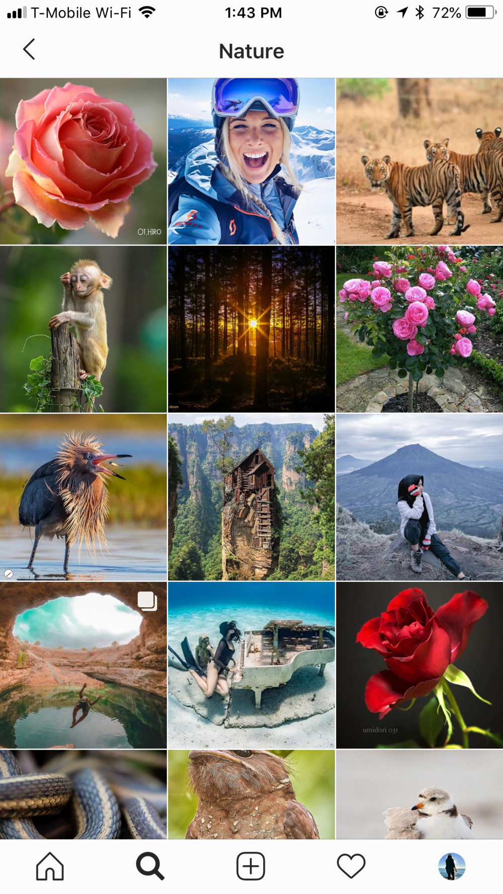 Nature Section of the Explore Tab