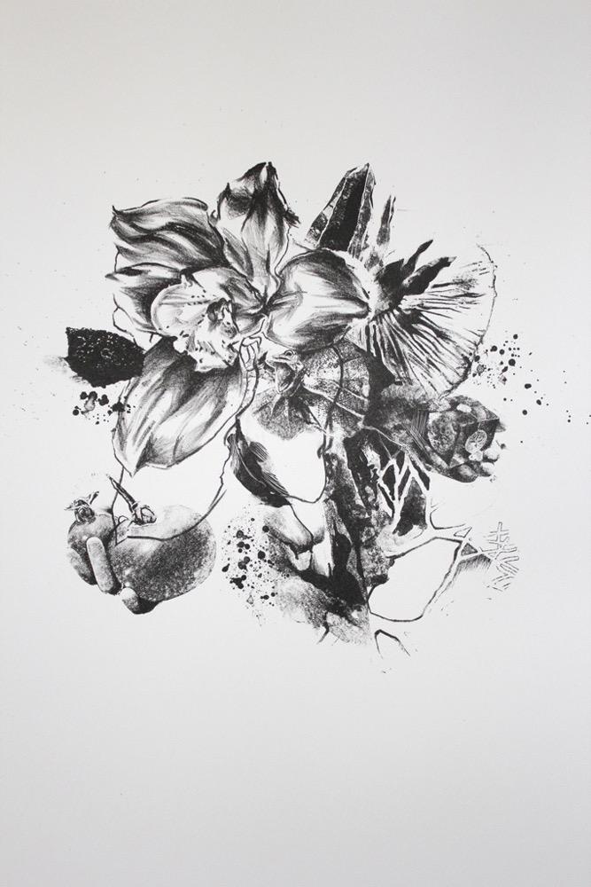 Iris Burst, 2011