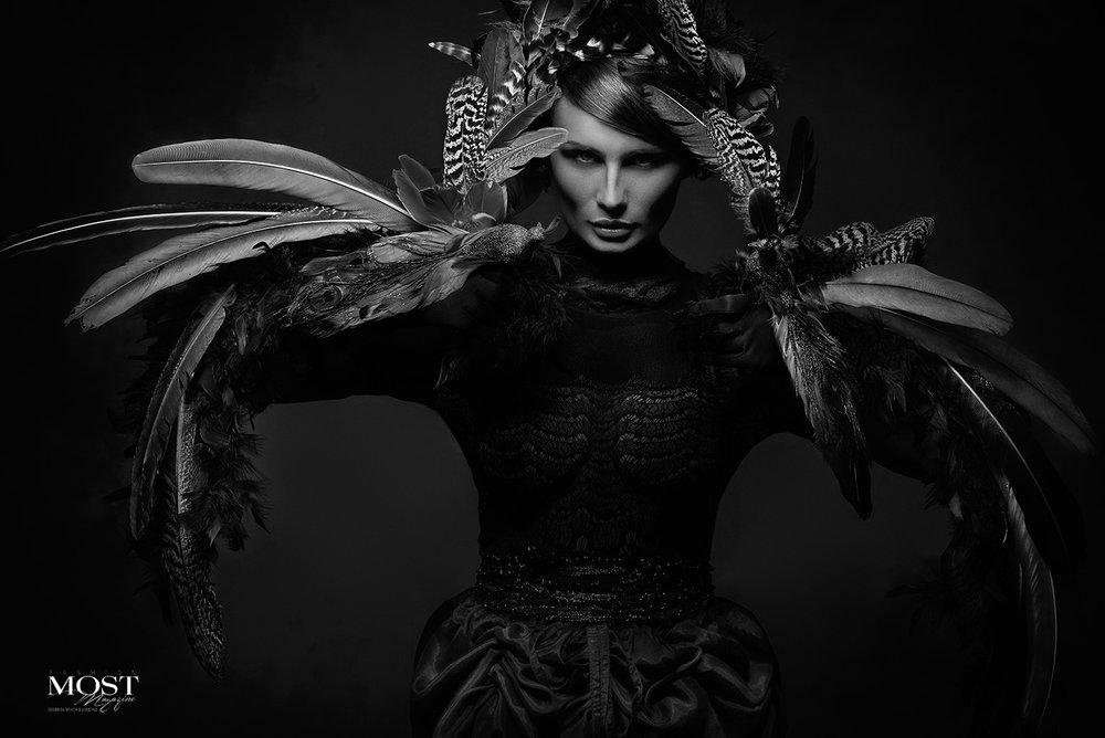 Black Raven_6.jpg