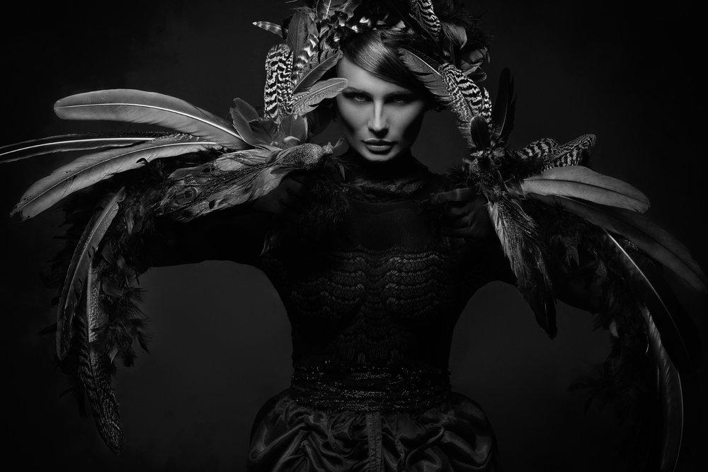Black Raven_Main.jpg