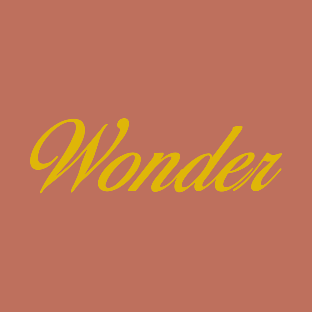 Wonder-NP-Nights-Haley-Sheffield