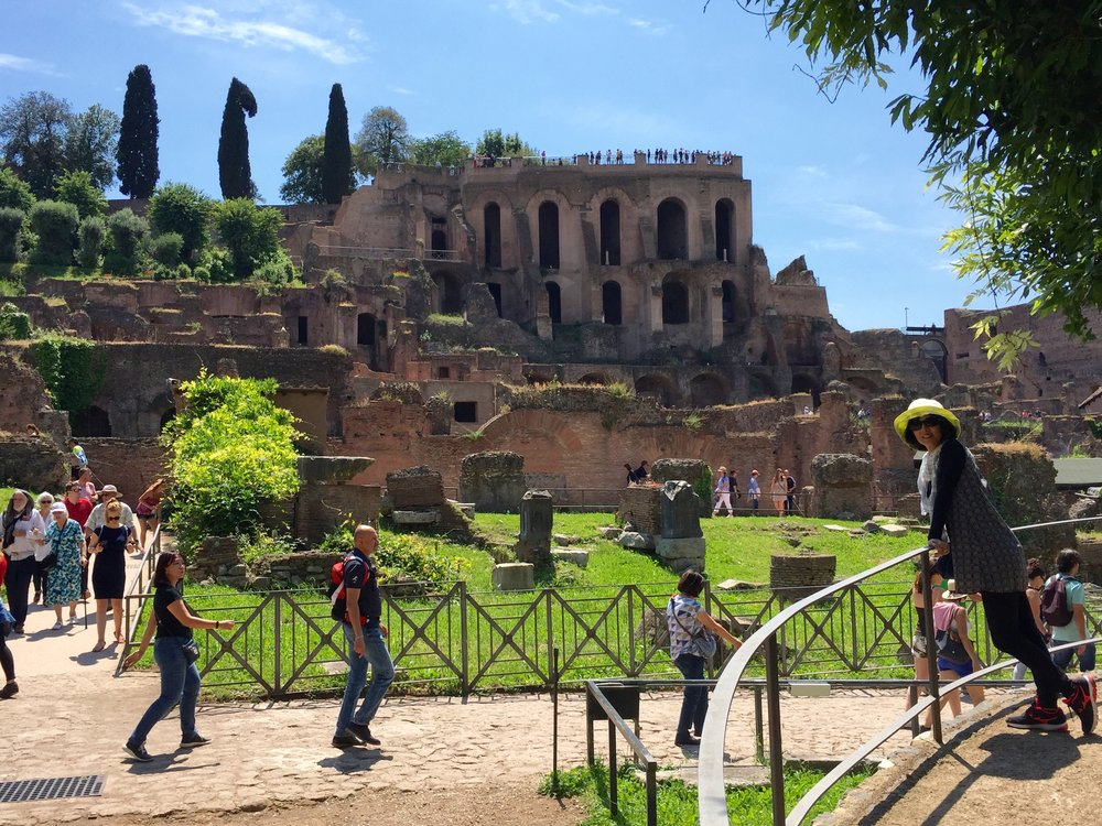 The Roman Forum looking back up at Palatine hill.