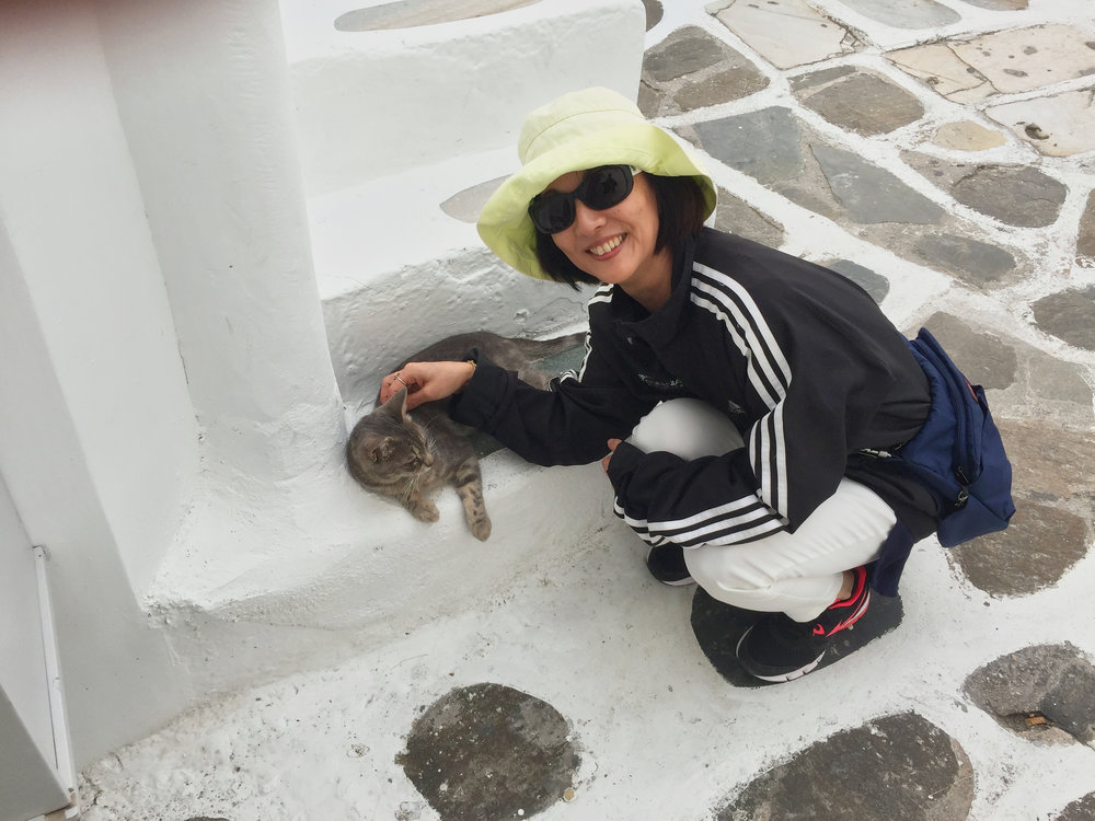 The Mykonos cat.  Yumi tried to find a cat in every place we visited.
