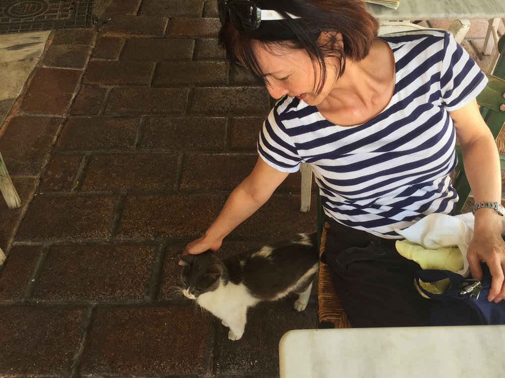 The second thing that Yumi looked for everywhere we went were cats.  The cat of Athens.