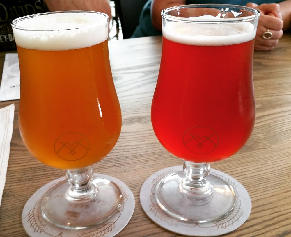 Remarkable color and flavor in every beer... On the left is the Elixir Citra and the right Thicket and Thorns.