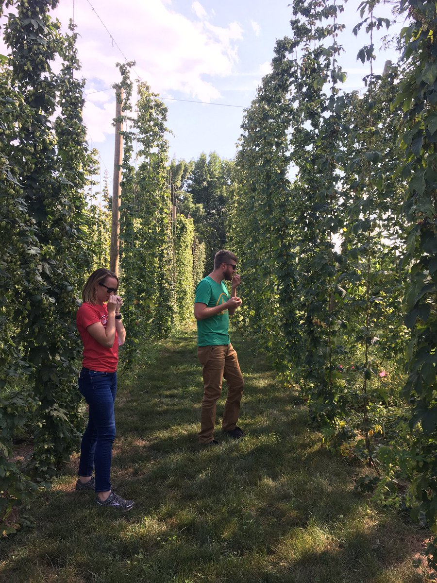 Photo from Tweet from Tom Wilmouth Co-founder of Zipline Brewing.  In the picture are Katie Kreuser Nebraska Extension Hop Program Coordinator and Marcus Powers Co-founder of Zipline Brewing.