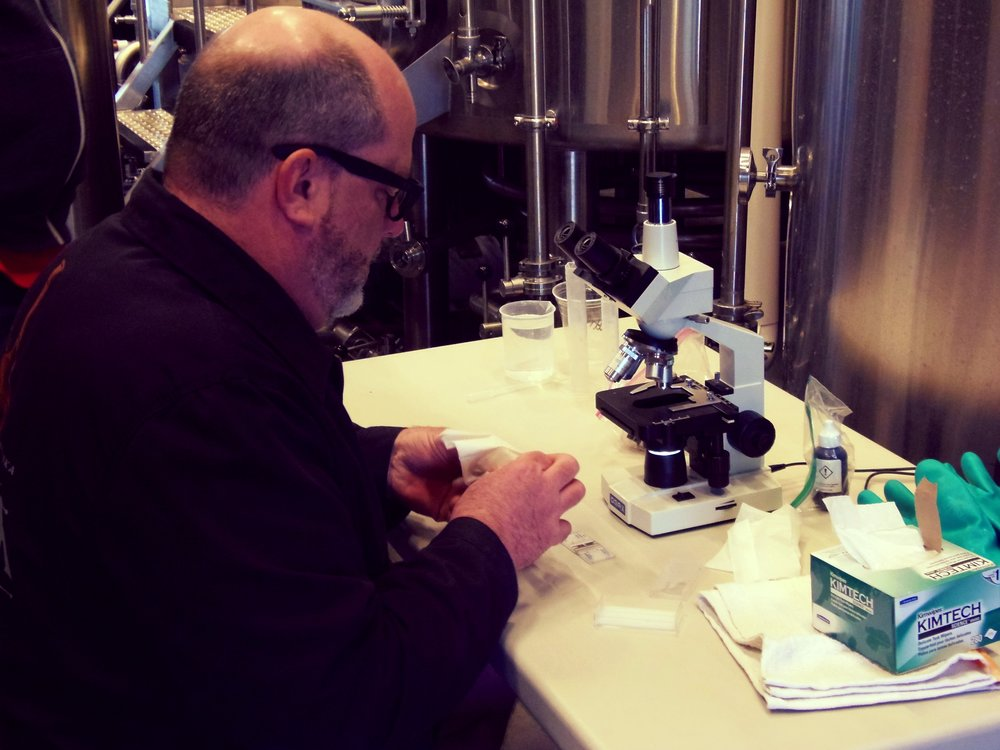 Tim is preparing to check the yeast to make sure there are enough active cells that are ready to be used for this beer