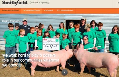 smithfield pigs.jpeg