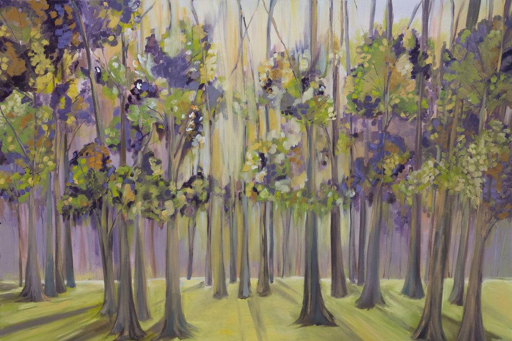 purpletrees.jpg
