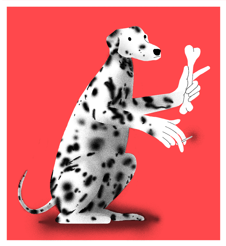 Dog Print Final-site.jpg