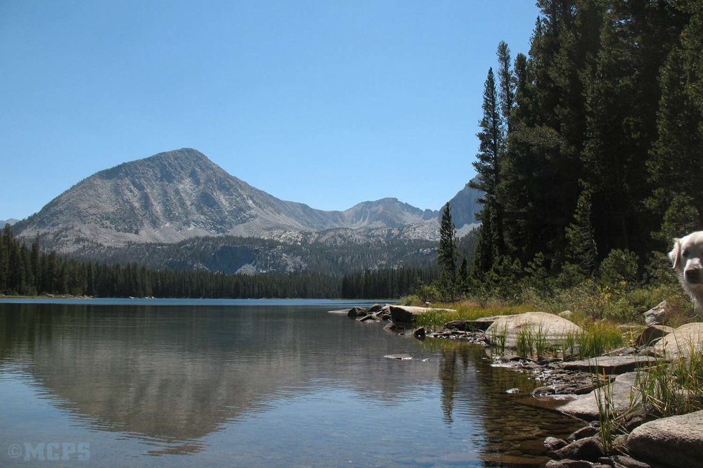 sierra high country lake with excellent fishing