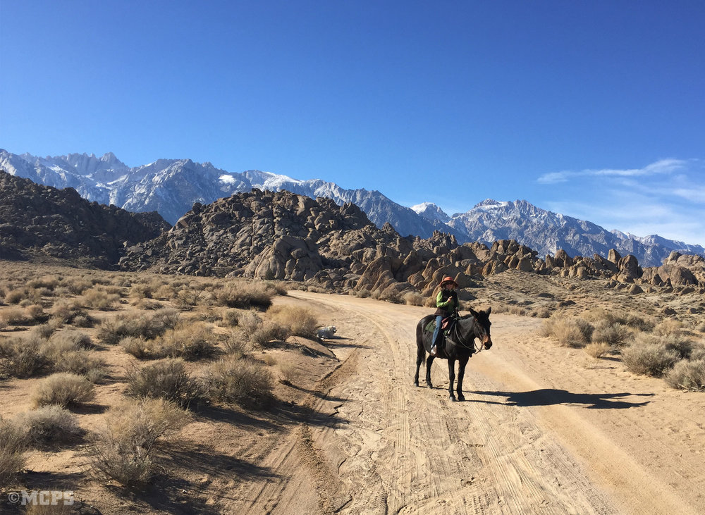 Riding in the Alabama Hills October through April thanks to McGee Creek Pack Station.