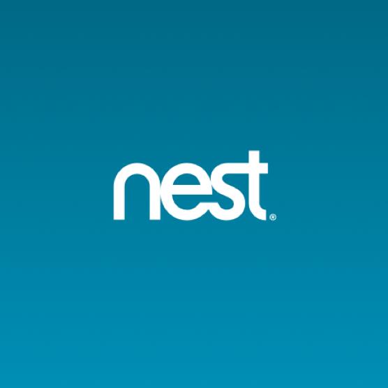 nest flow.png