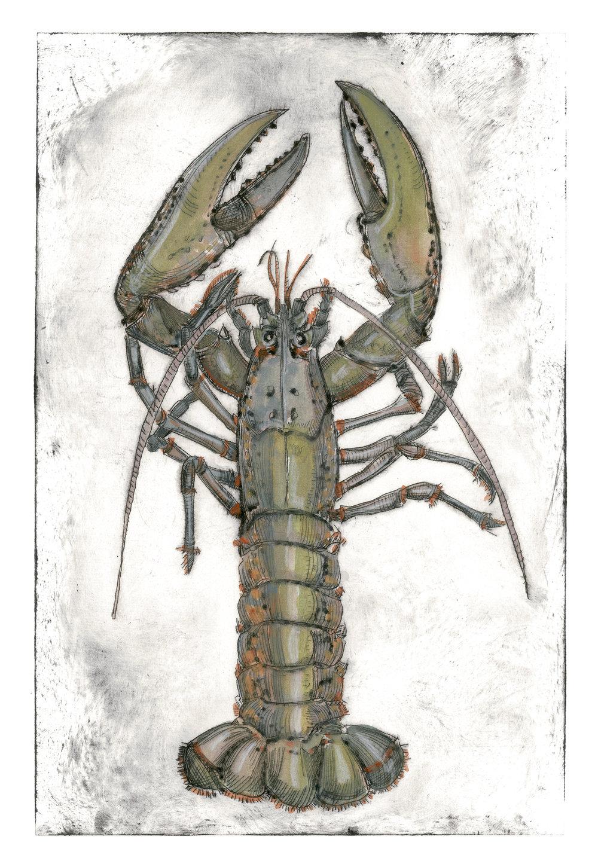 Lobster, 20×18 $95