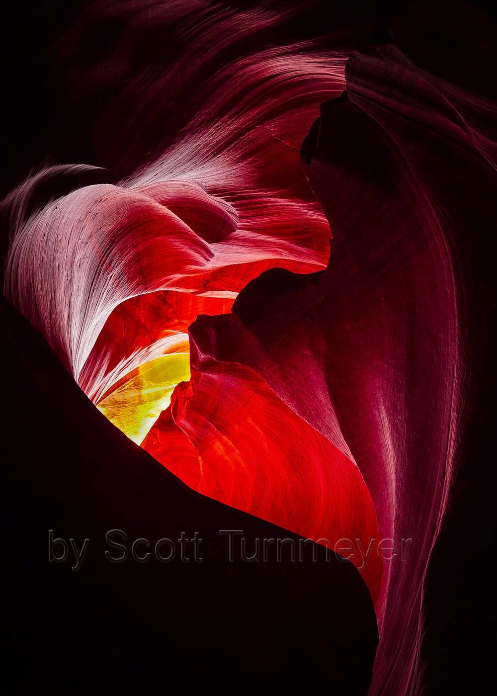 The Heart by Scott Turnmeyer