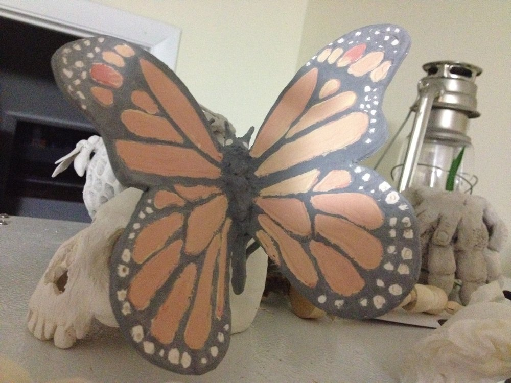 cerretani butterfly 3.JPG