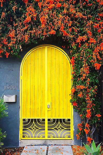 Colourful Doors.jpg