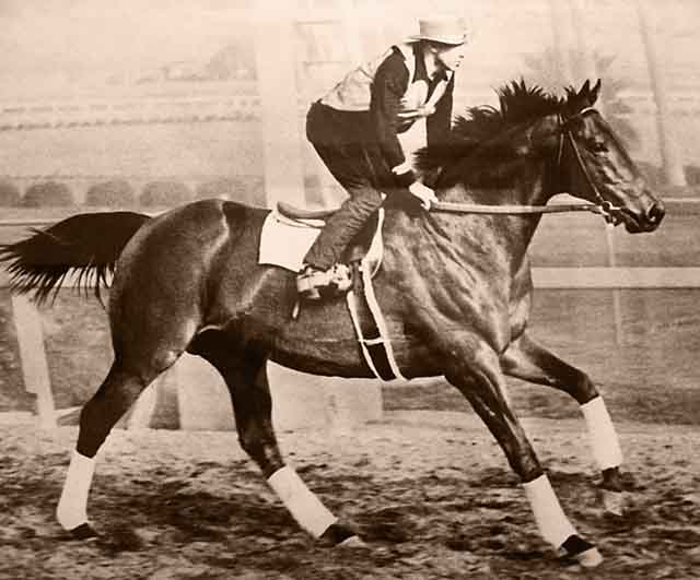 'Seabiscuit on workout with George Wolf' by Seabiscuit Heritage Foundation/Wikimedia Commons | License - Public Domain