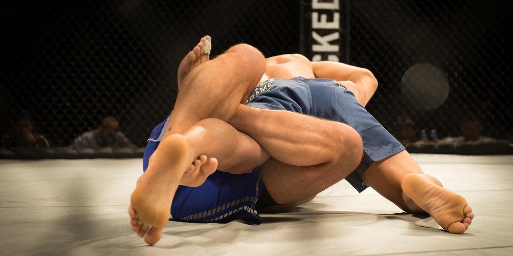 shutterstock_408377089-MMA_cage_men_wrestling-1500x748.jpg