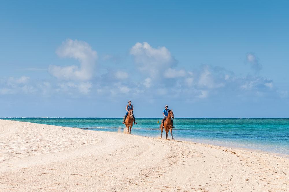 AniVillas_Dominican_Horsebackriding