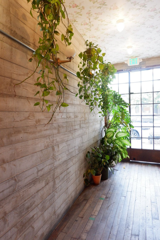 Alfred-tea-room-hallway-with-greenery