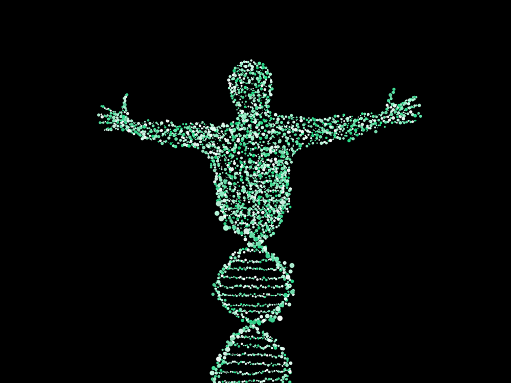 DNA person by Neu Paddy.png