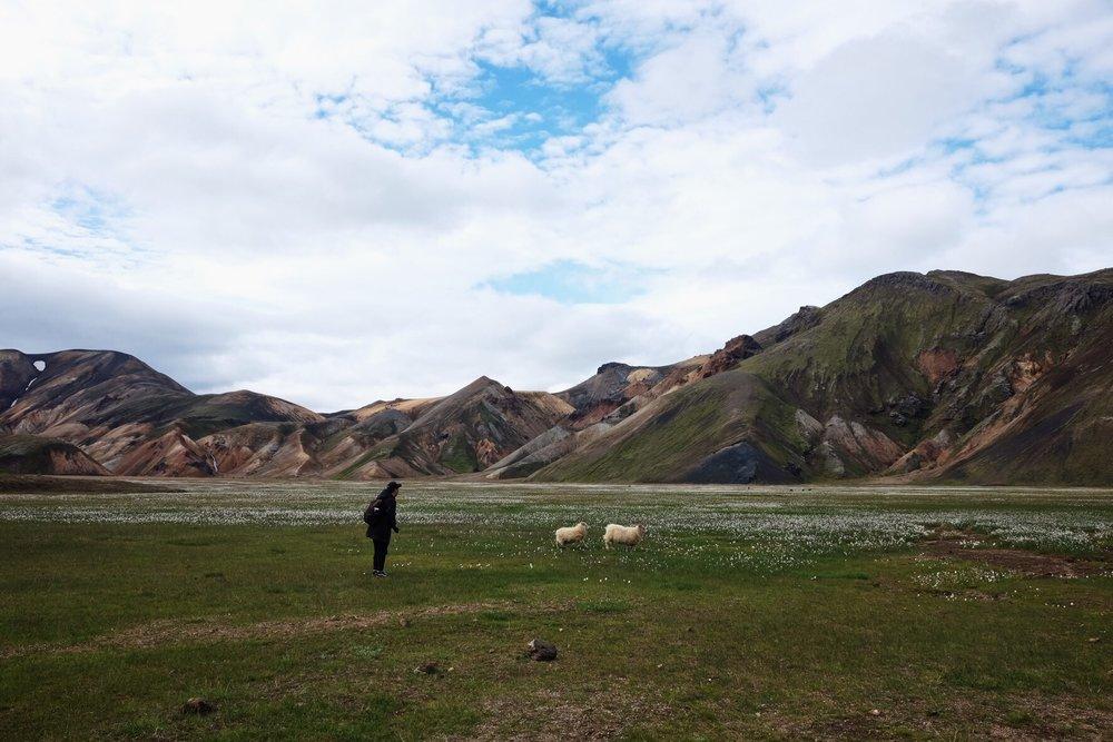 CharlesKang Iceland '18 5.JPG