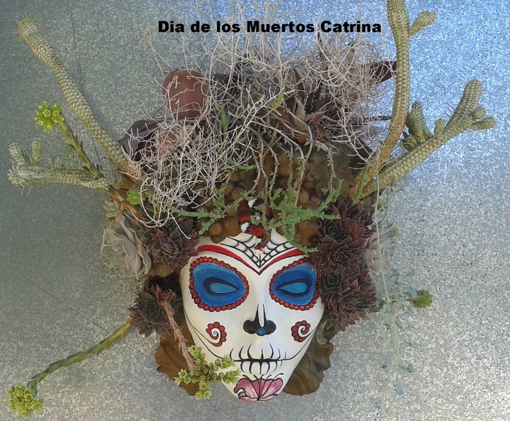 A progression of Day of The Dead Catrina wall planter can be found in the Themed Container Plantings section. The original unit was one color throughout - the brownish olive of the man-made composite. Her transformation included the painting of her face in addition to holes being drilled into the sides of her head. This enabled the plantings to resemble a headdress framing her face.