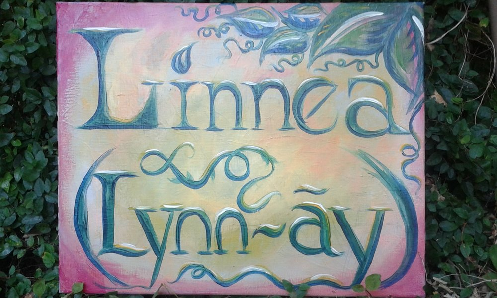 Do you have a special event requiring a colorful painting of the guest of honor's name? Or any other message you would like to convey in a bold manner? This name sign was painted with acrylics in a freehand style without the use of a preliminary sketch or line drawing.