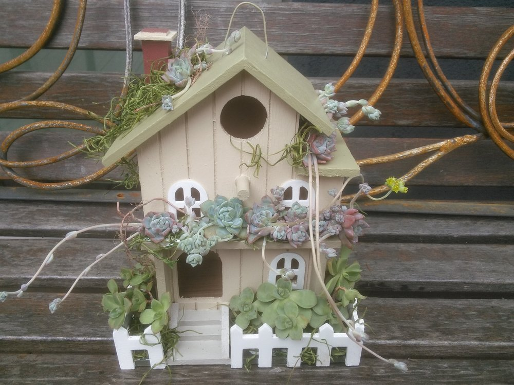 Light Green Birdhouse with Succulents.jpg