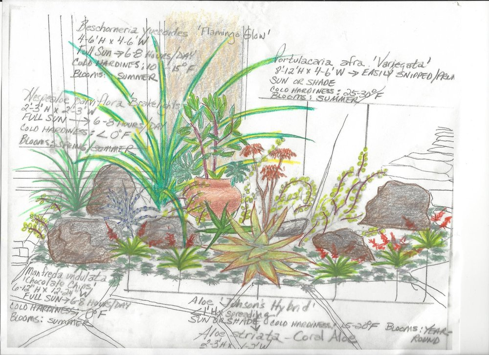 Susie Newcomb Back Patio Bed Concept Drawing in COLOR.jpg