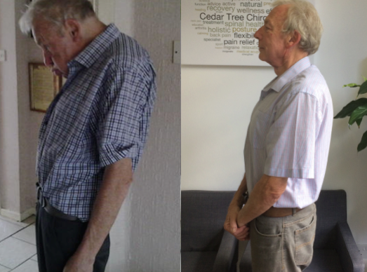 Peter North Postural Changes.png