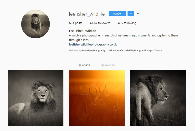 Click for  Lee Fisher's Instagram