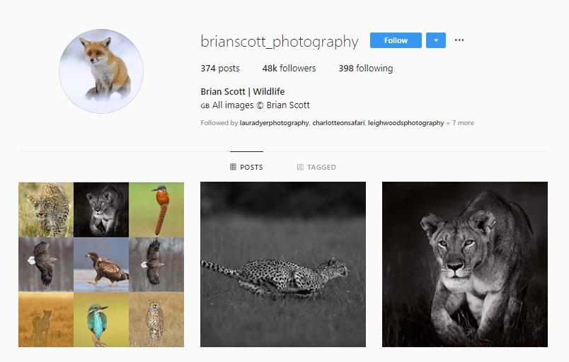 Click for  Brian Scott's Instagram