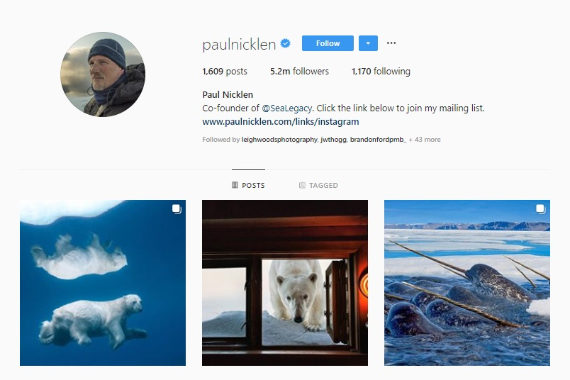 Click for  Paul Nicklen's Instagram