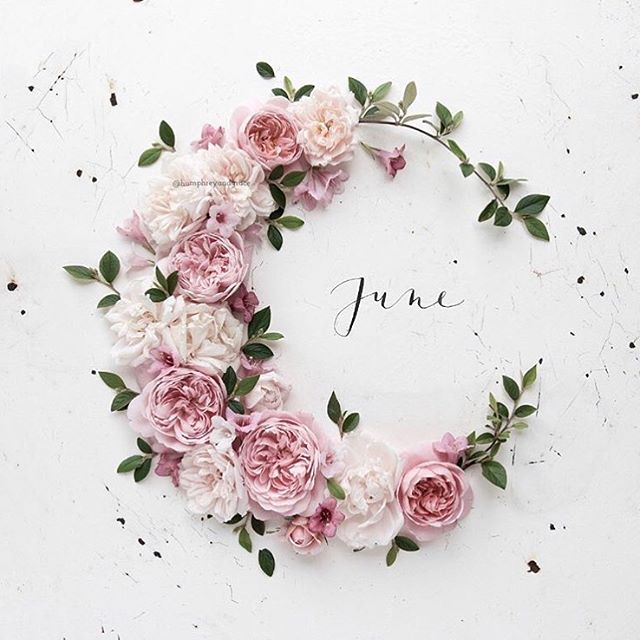 June has always been one of my favourite months, the first reason is, it's my birthday this month 🥂 Secondly, June is a time to reflect, plan and prepare for the remaining 6 months of the year. This month my three P's are passion, patience and perseverance. Bienvenue Juin 🌺