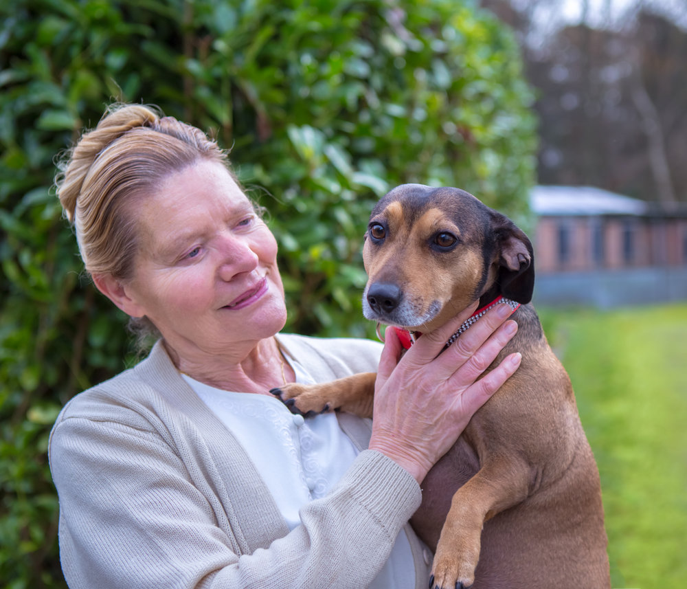 Meet Connie Cuff with a dachshund she is looking after while her owner overcoming cancer treatment.