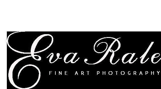 Fine logo_white.png