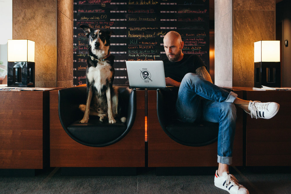 ©TomWoollard_editorial-portrait-stylish-cool-urban-man-musician-with-dog-using-laptop-hotel-lobby_Düsseldorf.jpg