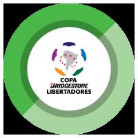 FR_Tiles_Tournaments_Libertadores.png