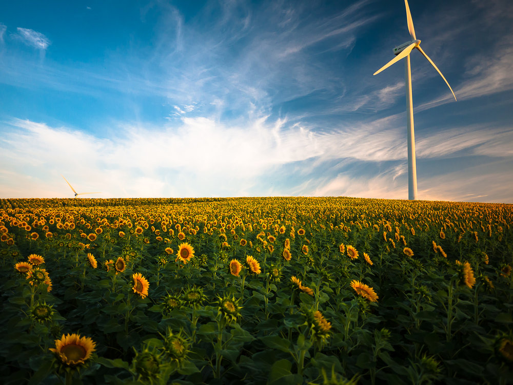 10 REASONS WE HAVE CLIMATE HOPE