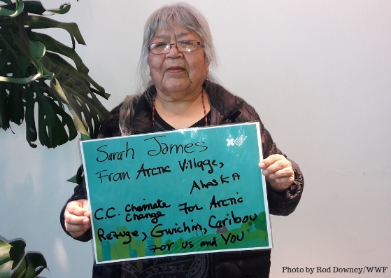 """""""My people's way of life is under threat. Climate change is a human rights issue."""" - Sarah James, Arctic Village, Atlanta"""