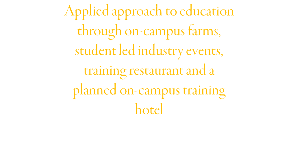 Courses l Highlights 3.png