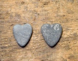 3184281-two-heart-shaped-stones-on-driftwood.jpg