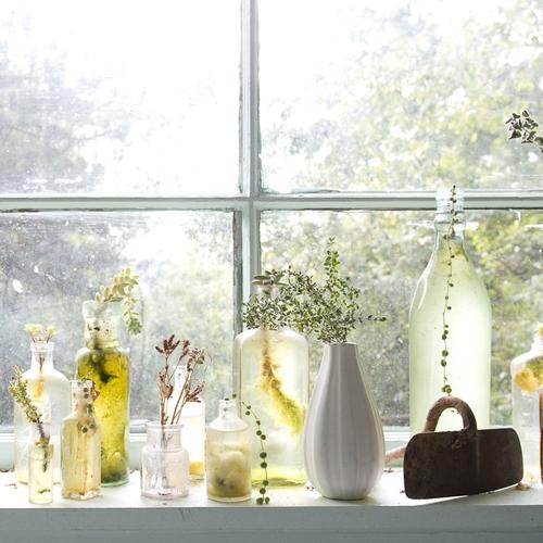 2012_hopes_kitchen_window-9463.jpg
