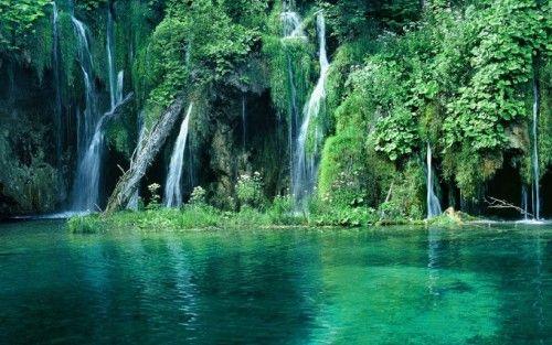 Discover phu quoc national park