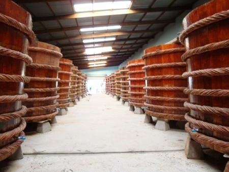 Visit fish sauce factory