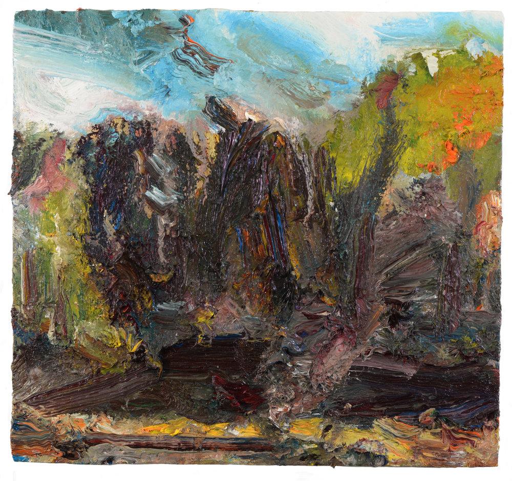 """""""Pond"""" oil on panel  2016  11""""x14"""""""